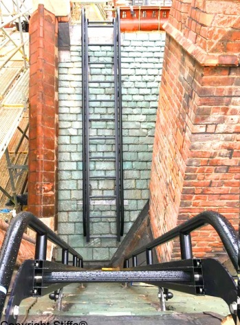 Ladder With Low Level Handrails Conservation BLACK 2